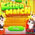 Kitten Match Hack